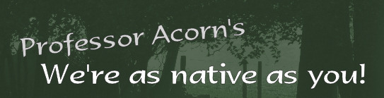 Professor Acorn's - We're as native as you!